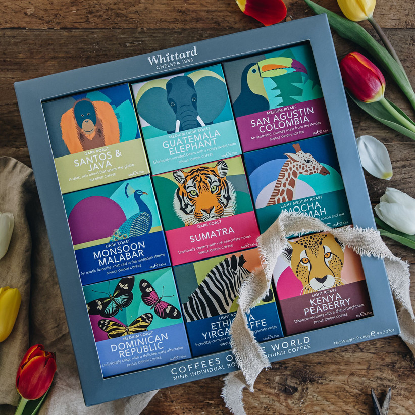 Animal illustrated coffee gift set