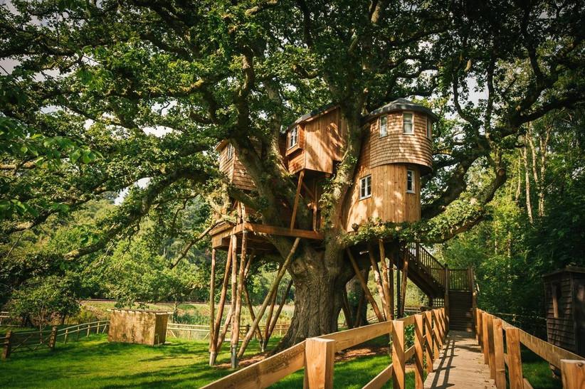 Small treehouse wedding venue
