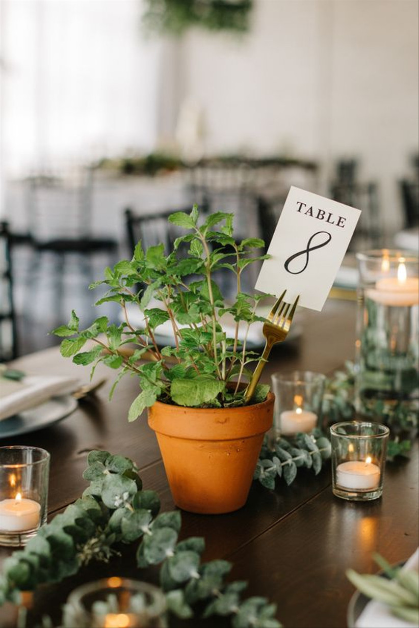 Plant pot wedding table number