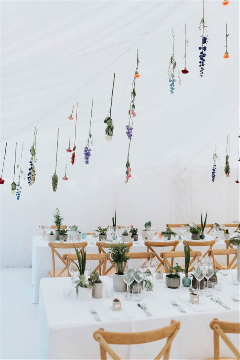 Single stem hanging flowers