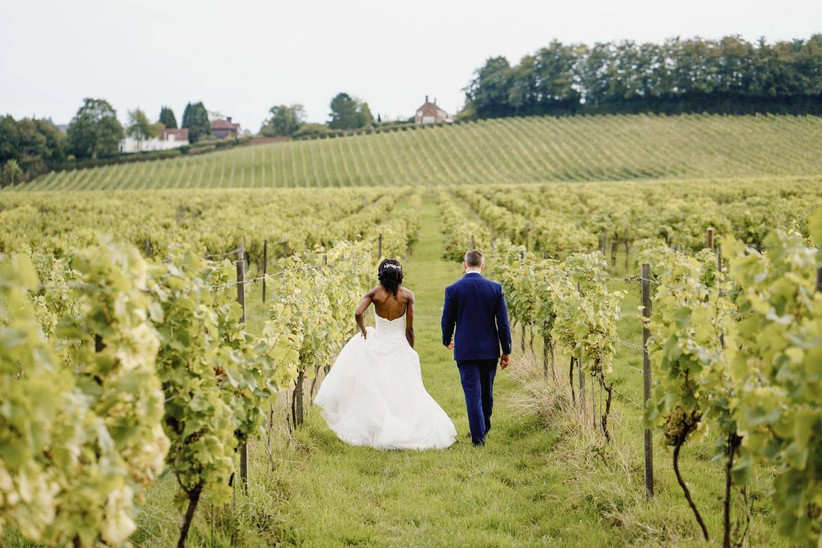 Married couple standing in a vineyard