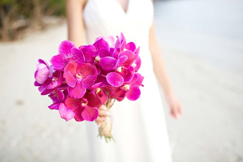 these-eye-catching-pink-blooms-would-be-ideal-seasonal-wedding-flowers-for-a-summer-bouquet