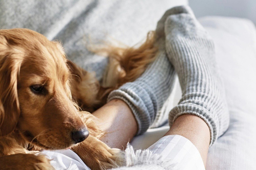 4. Wedding thank you gifts - cashmere bed socks