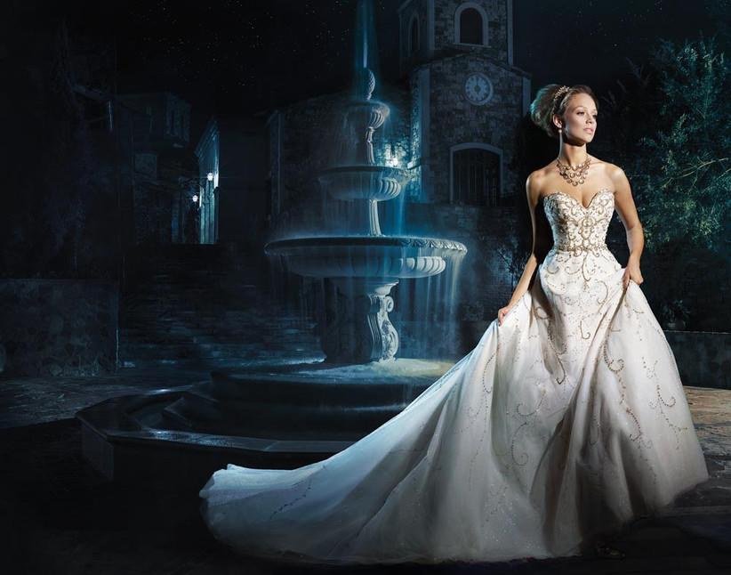 cinderella-inspired-disney-wedding-dress