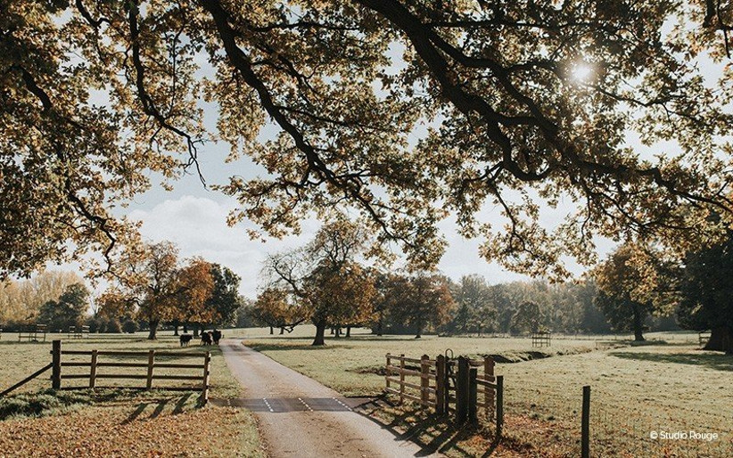 The Best Woodland Wedding Venues (6)