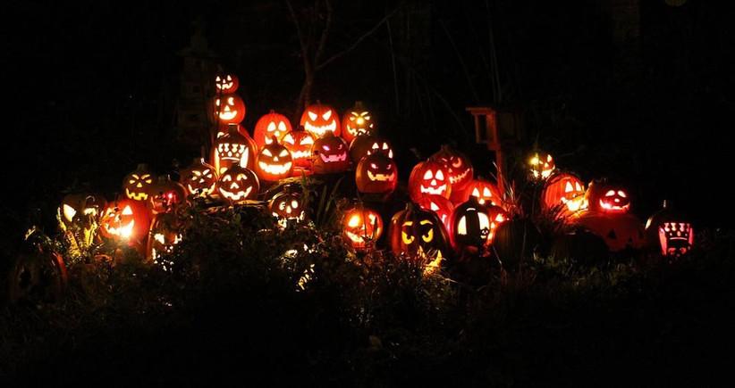 pumpkin-carving-2
