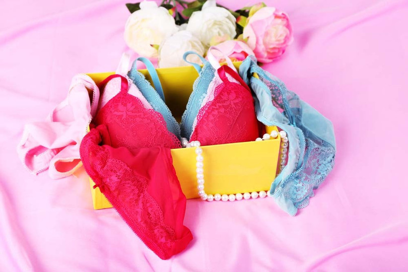 lingerie-making-masterclass-with-gohen-com-2