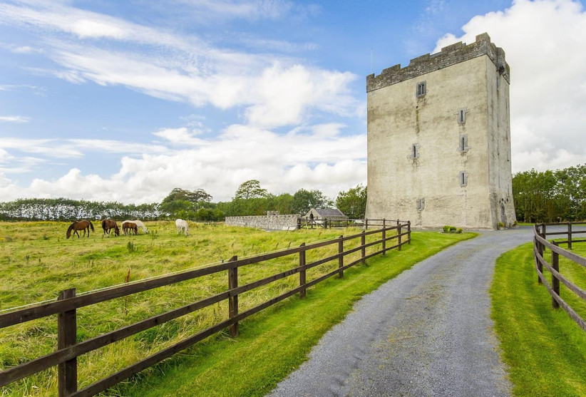 Outside view of a castle next to a field with horses