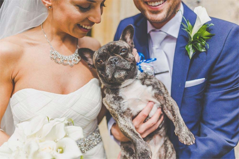 a-wedding-rule-you-can-break-is-the-no-pets-allowed-rule