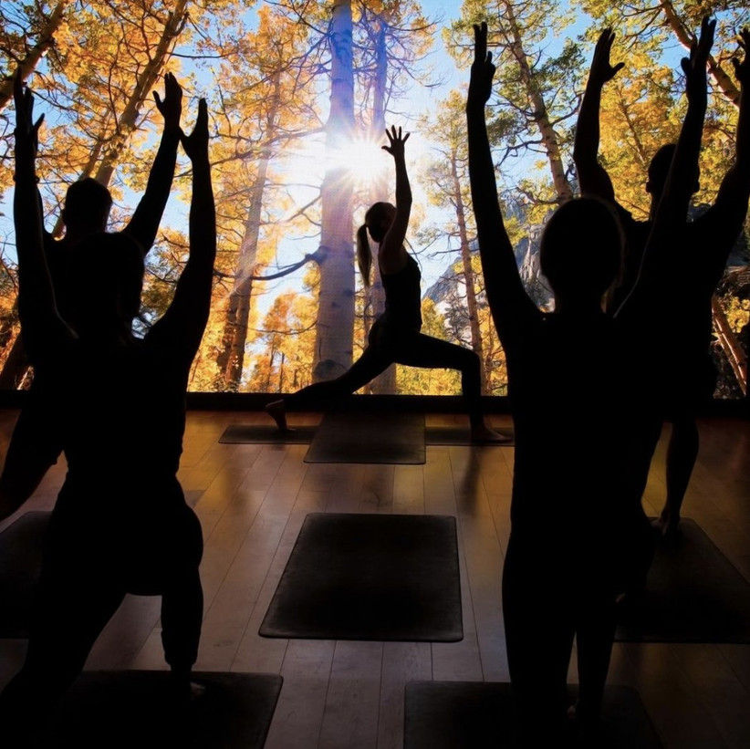 Yoga class participants against an LED screen displaying a forest scene