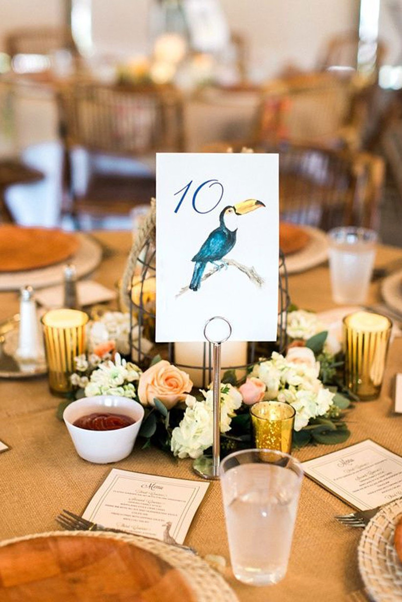 A-colorful-animal-lover-inspired-wedding-at-Virginia-Zoological-Park-in-Norfolk-photographed-by-Molly-Lichten-Photography_