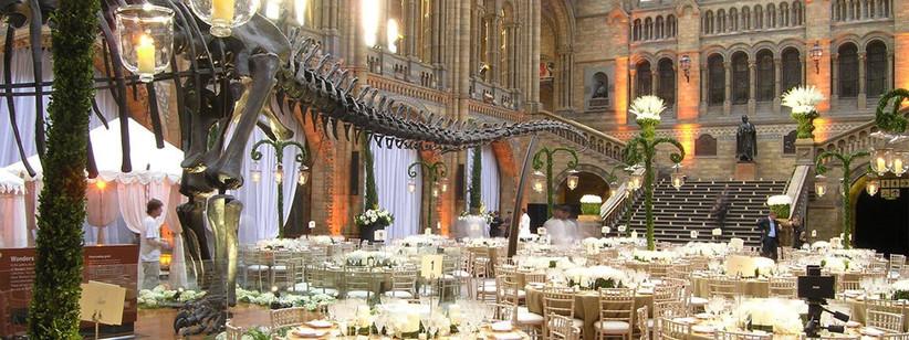 wedding-at-natural-history-museum