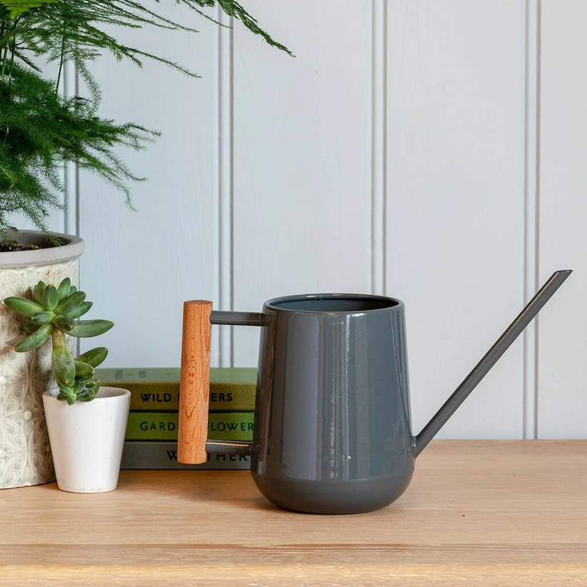Slim grey indoor watering can with a wooden handle on a wooden desk next to a green succulent plant, pile of green books and panelled white wall