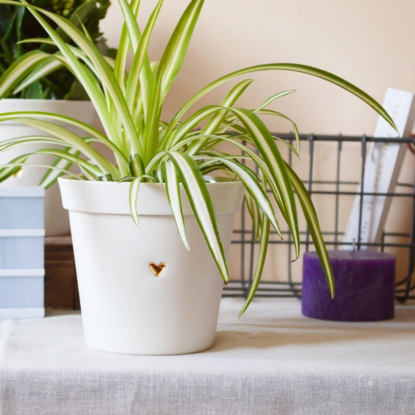 18th Anniversary Gifts Plant Pot