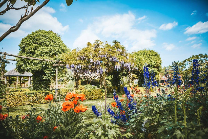 English country garden with wisteria and poppies