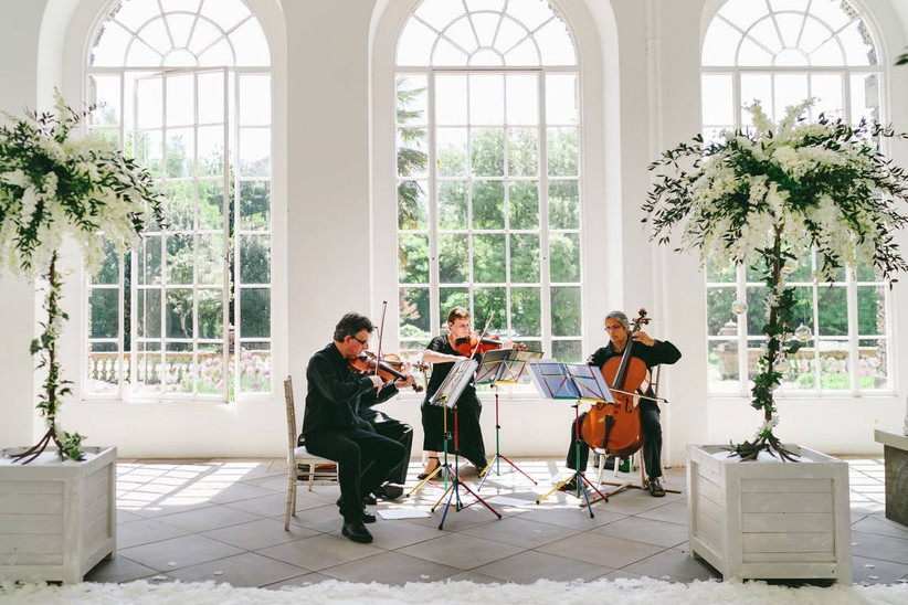 Musicians play next to trees in an Orangery