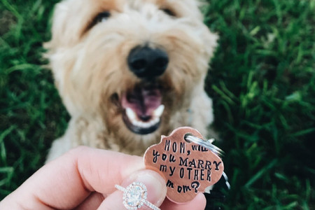The Best Engagement Announcement Ideas: 21 Ways to Break the News