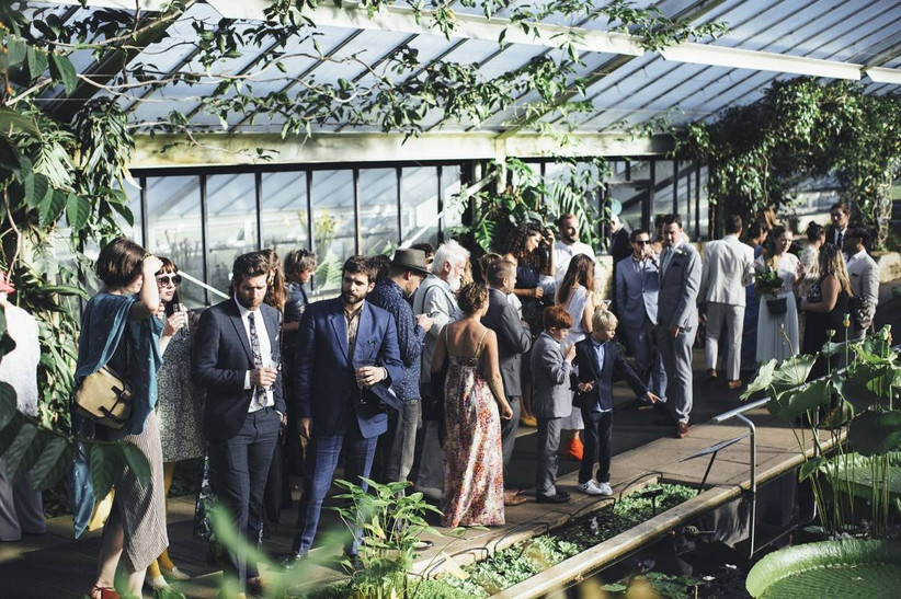Wedding guests mingle inside a green house