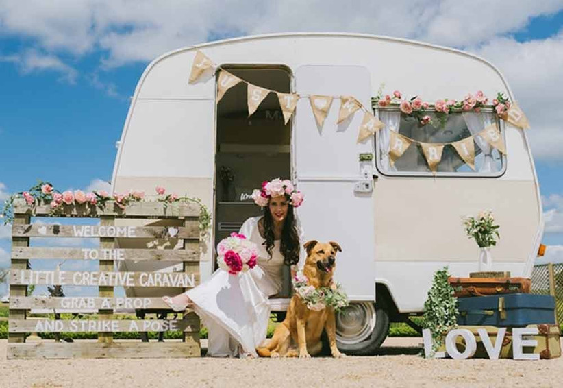 dog-at-vintage-wedding
