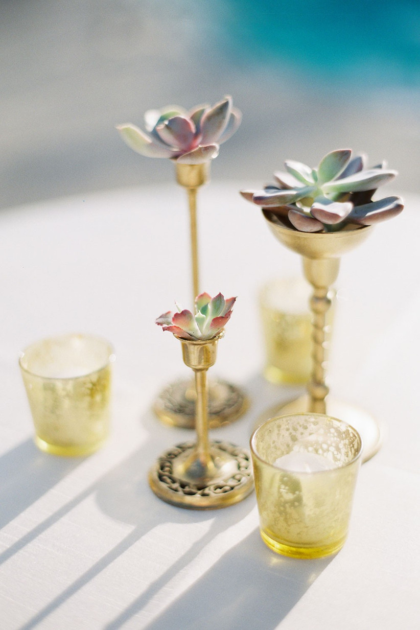 Succulents-in-Candle-Holders