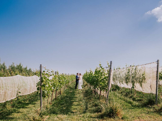 Why You Should Consider a Vineyard Wedding Venue (Plus 10 of the UK's Best)