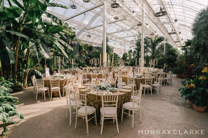 Wedding dining area in a botanical greenhouse
