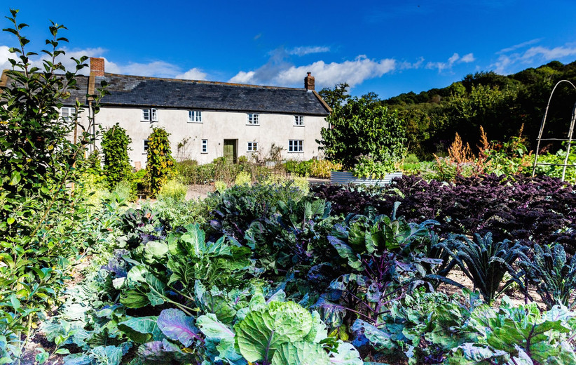 Exterior of River Cottage on a sunny day