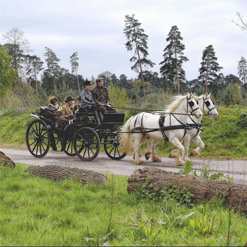 horse-drawn-carriage-for-weddings