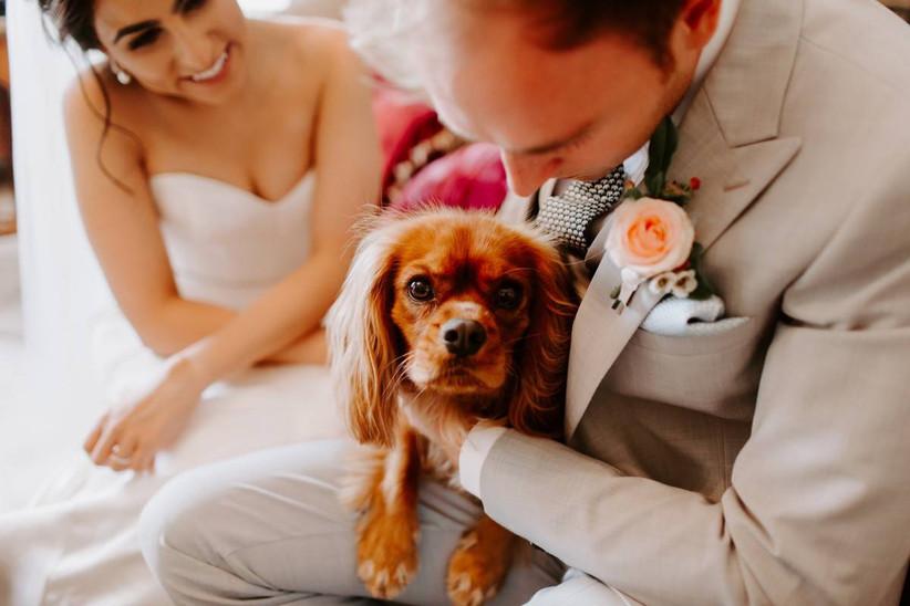 Amanda's Ark Dog Chaperone Wedding Service
