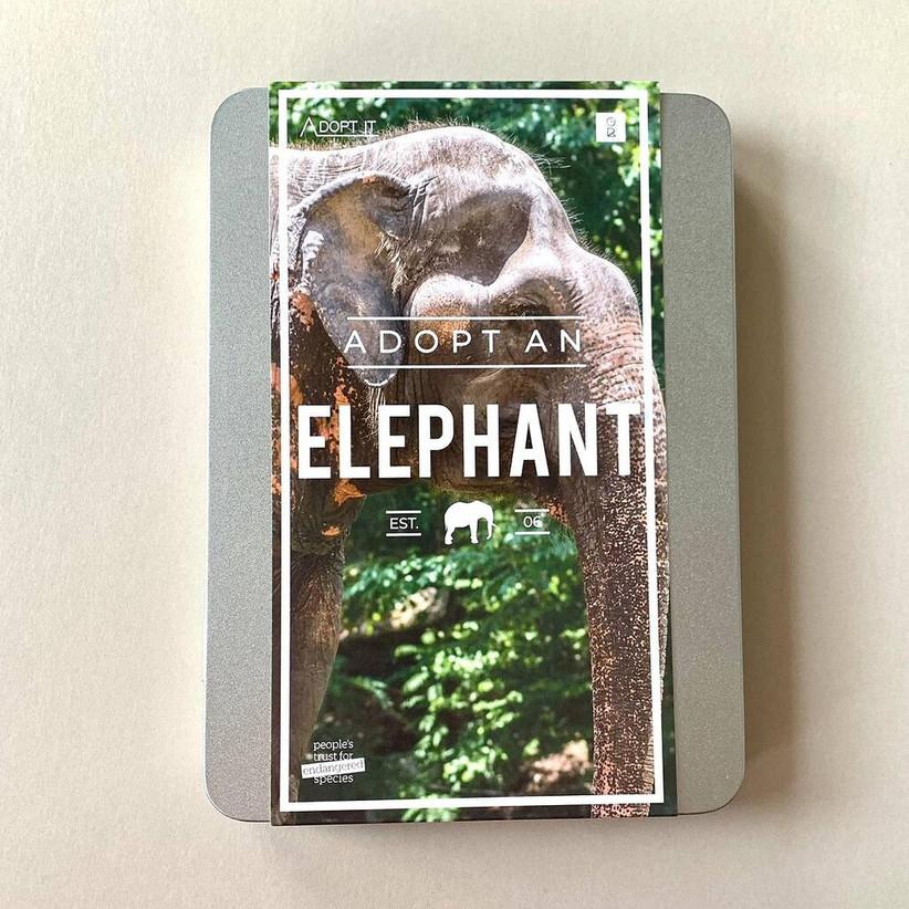 Adopt an elephant pack