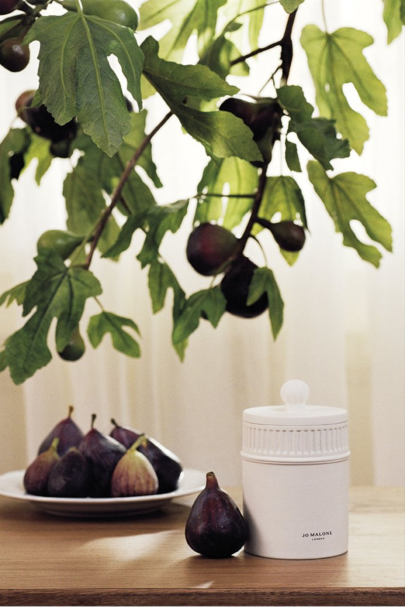 Fresh fig and cassis townhouse candle