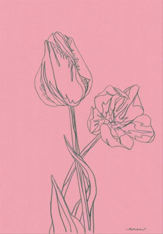 tulip line drawing