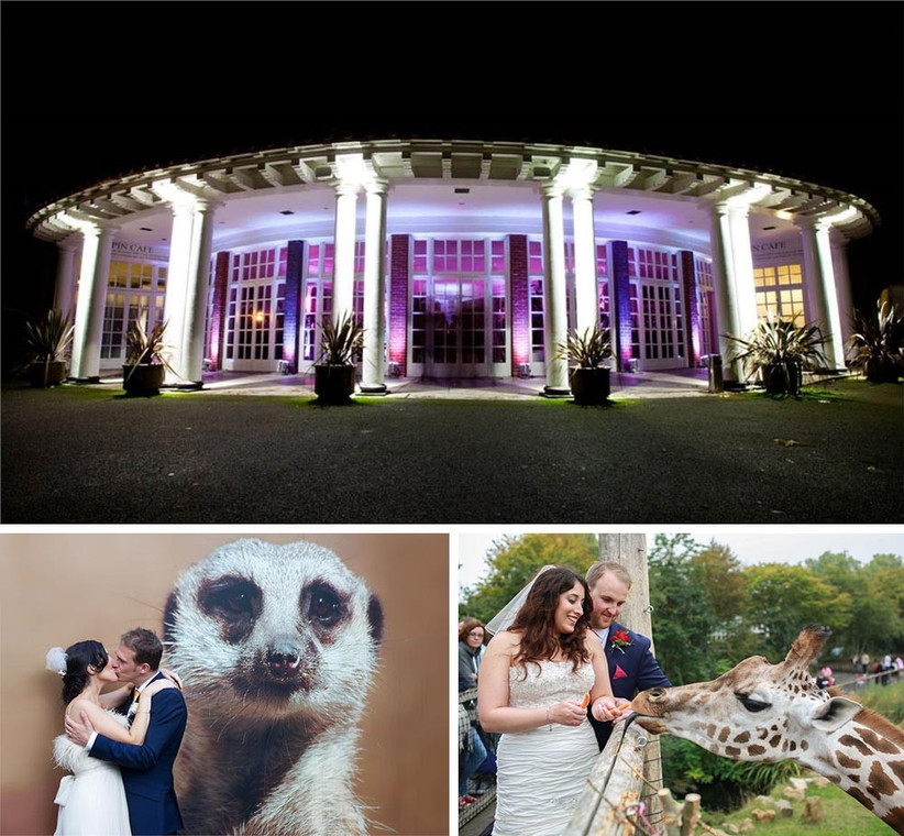 london-zoo-wedding-venue