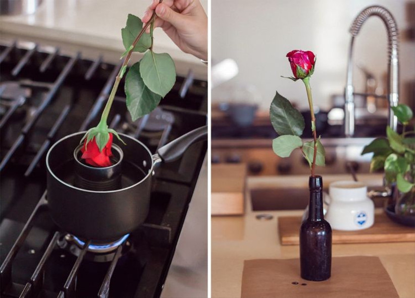 wax dipped flowers roses