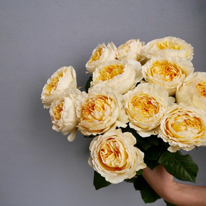 garden-roses-trend-jpg