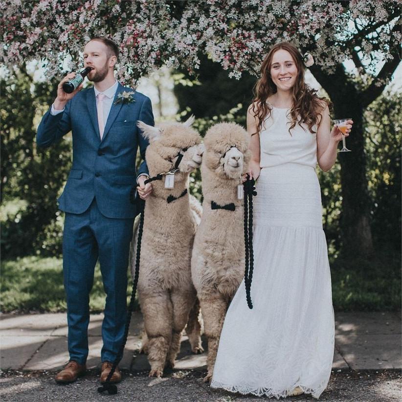 Wedding Entertainment Ideas
