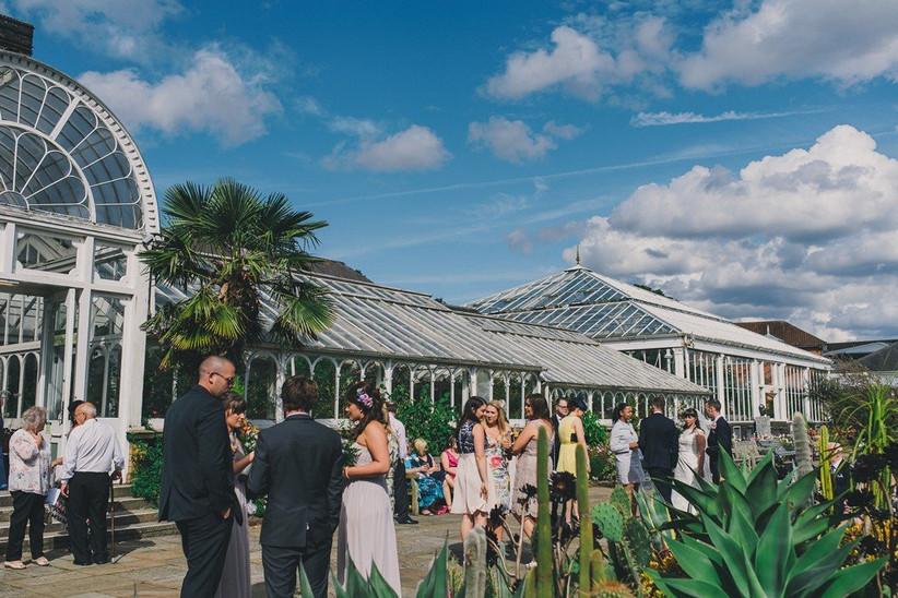 birmingham-botanical-gardens-guests-wedding