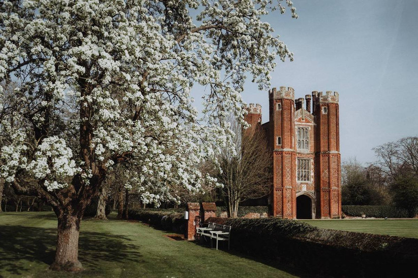 Outside view of a Tudor mansion with a white blossom tree