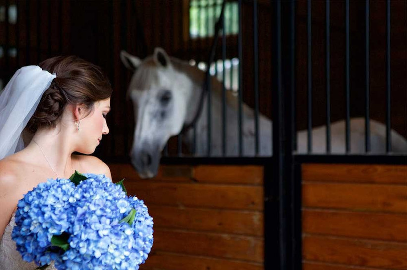 pretty-bride-with-horse-in-stable