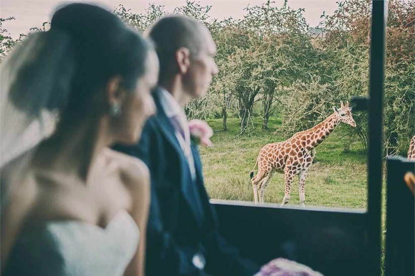 unusual-wedding-venue-port-lympne