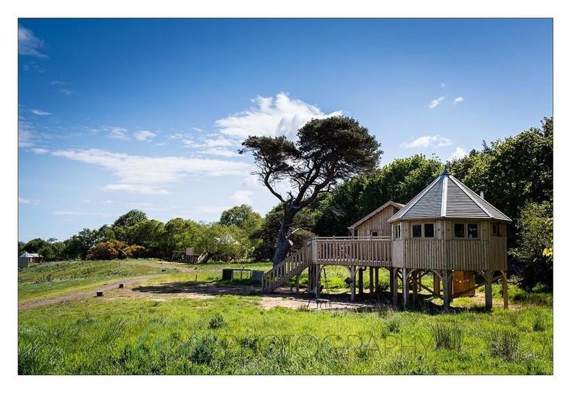 harvest-moon-tree-house-mini-moon-accommodation
