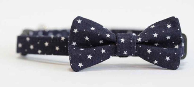 star-bow-tie