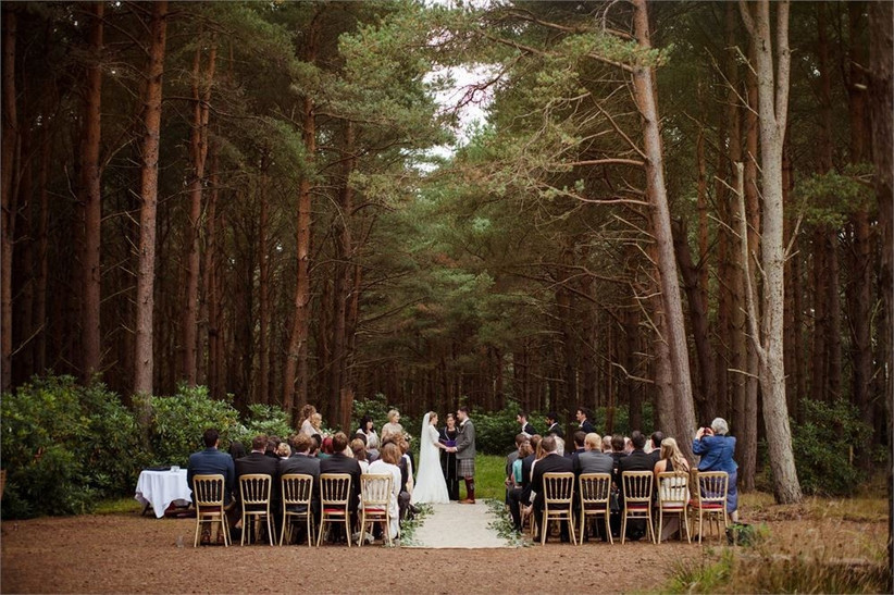 The Best Woodland Wedding Venues (8)