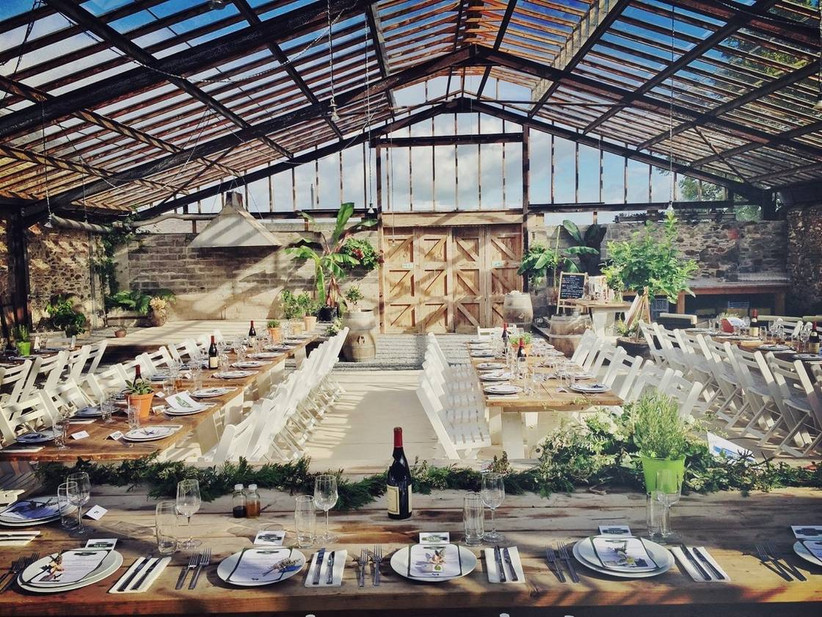 Wedding dining area in a greenhouse