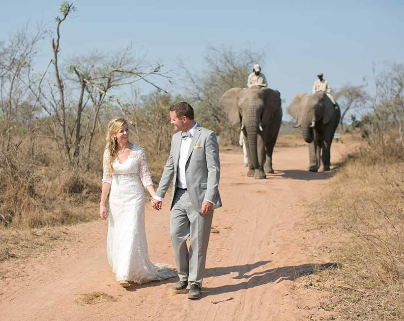 couple-with-elephants-at-wedding