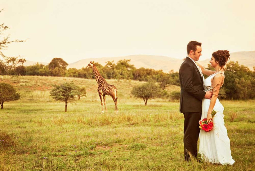 giraffe-with-couple