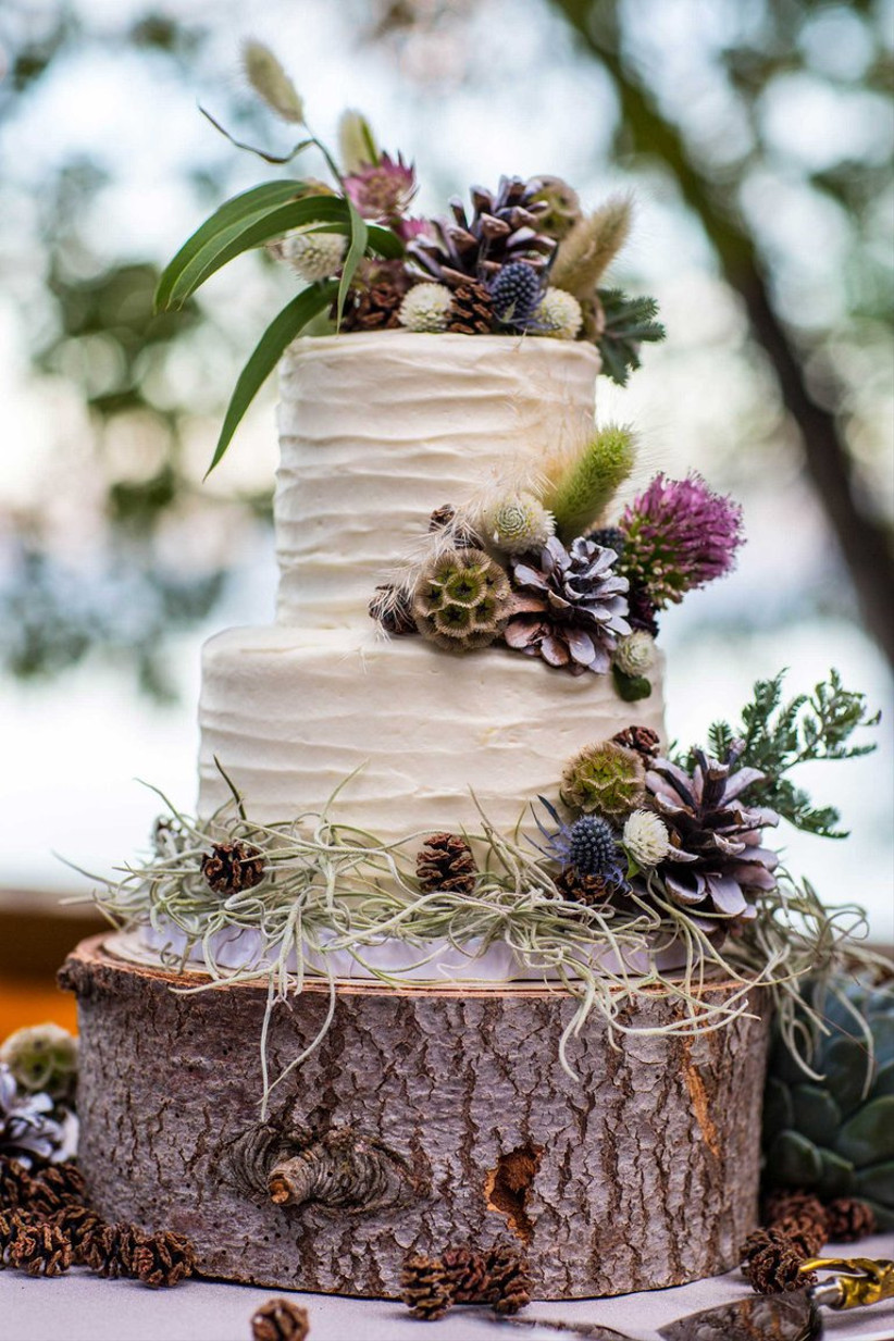Two tiered white rustic wedding cake with pinecones on log stand