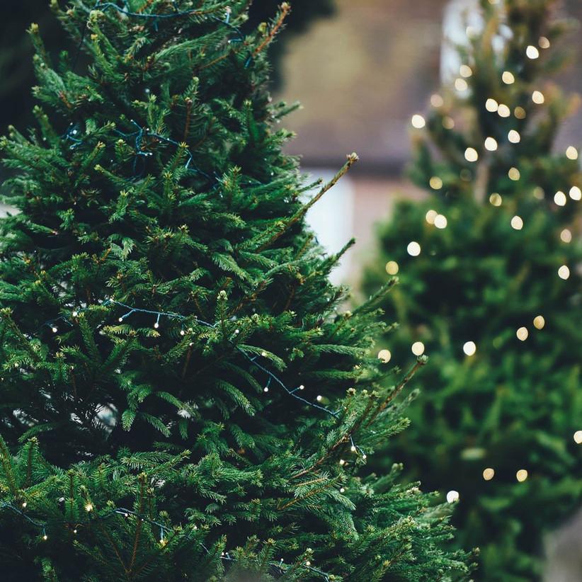 christmas-proposal-idea-4