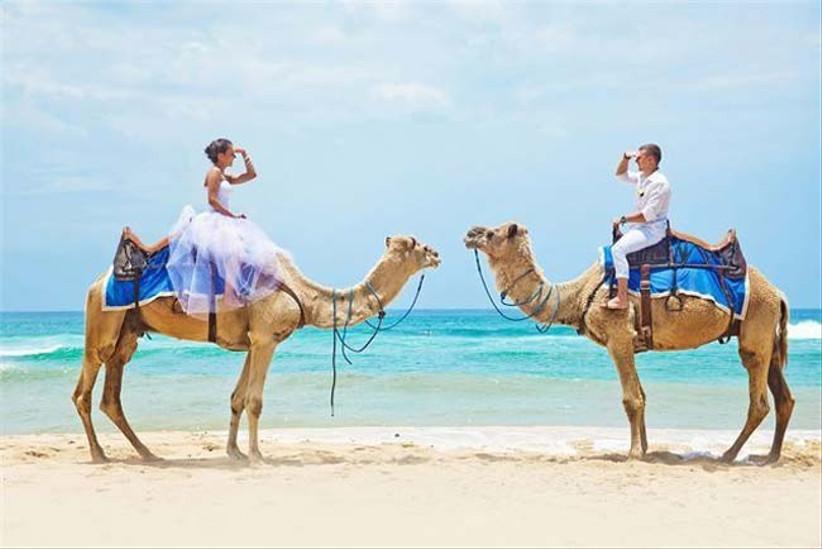 ride-camels-by-the-sea-for-a-fun-beach-wedding-idea