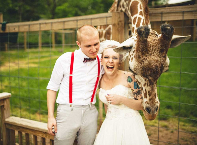 giraffe-at-wedding-with-couple-2